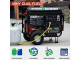 Durostar DS10000EH Dual Fuel Portable Generator Photo 1